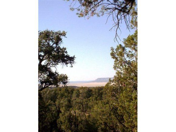 54867 N Presidio Parkway, Seligman, AZ 86337