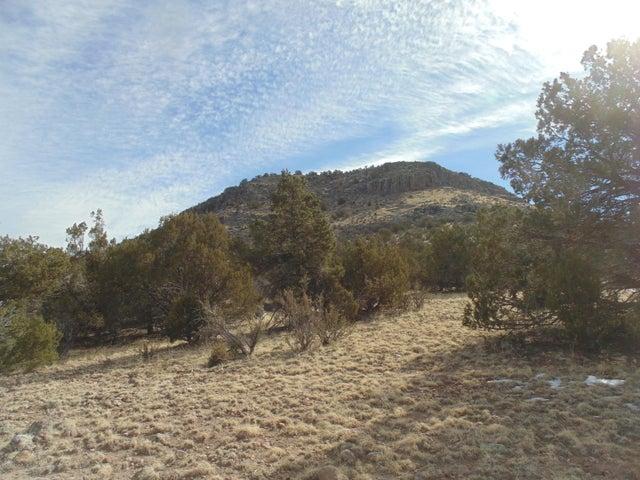 Lot 249 Round Mountain Loop, Seligman, AZ 86337