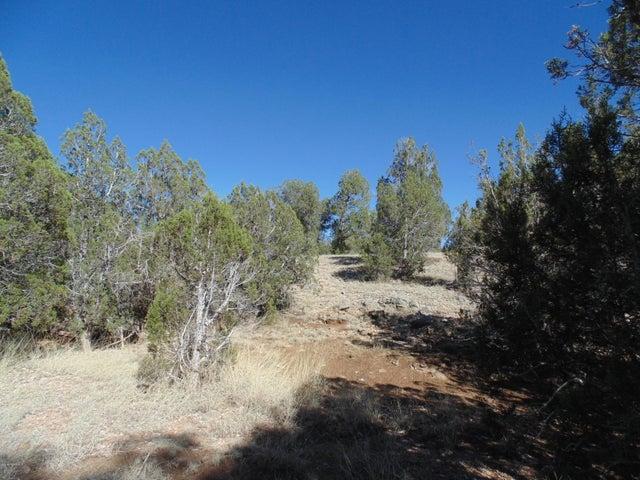 33 Stewart, Seligman, AZ 86337