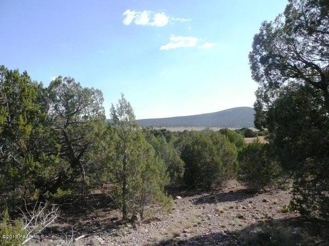 69 Juniper Mountain Ranches, Seligman, AZ 86337