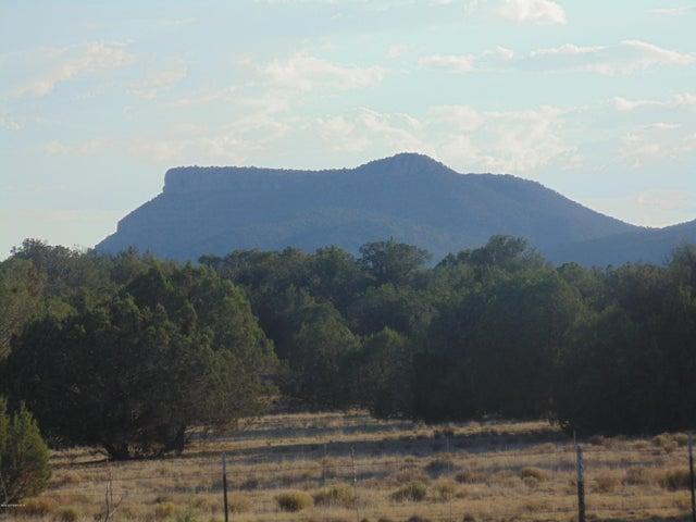1061 Dallas, Seligman, AZ 86337