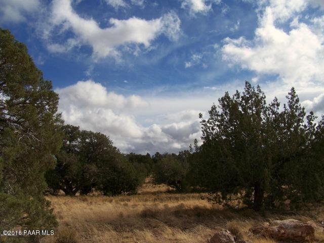 0 Hyde Park, Seligman, AZ 86337