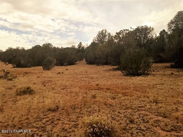 187 W Fort Rock Road, Seligman, AZ 86337