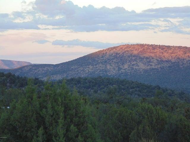 337 Rancheria Rd, Seligman, AZ 86337