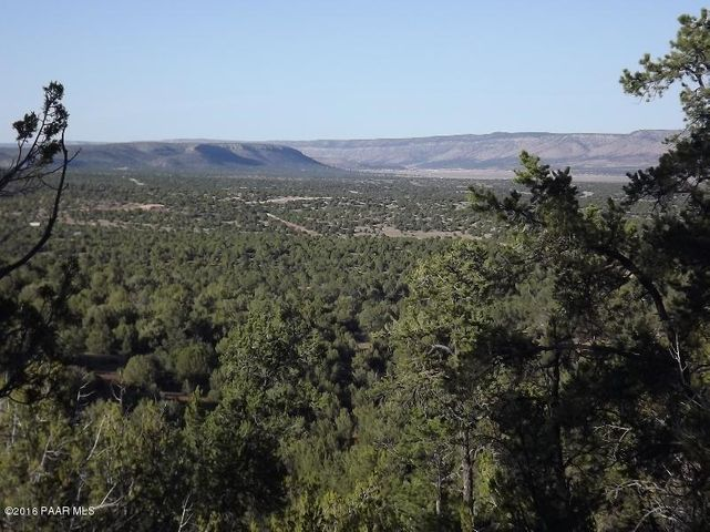481 Sierra Verde Ranch, Lot E, Seligman, AZ 86337
