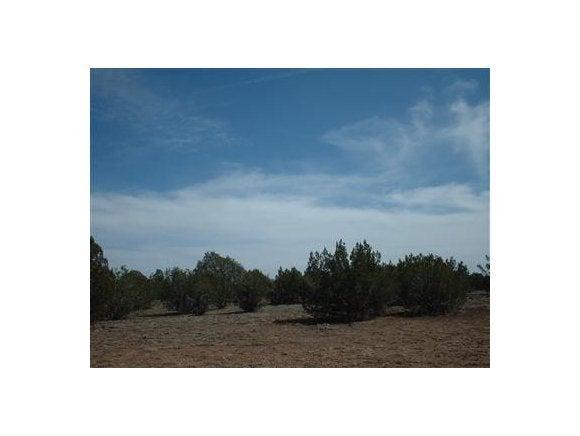 2474 W Presidio Parkway, Seligman, AZ 86337