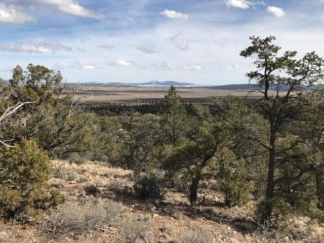 1240 Sierra Verde Ranch, Seligman, AZ 86337