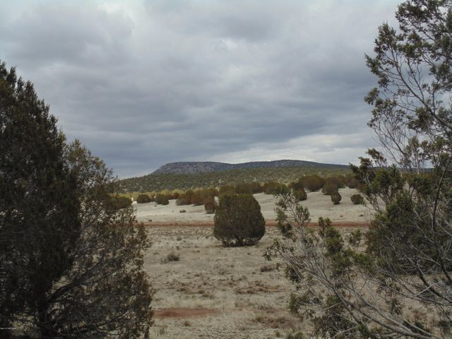 305 Trout Creek Trail, Seligman, AZ 86337