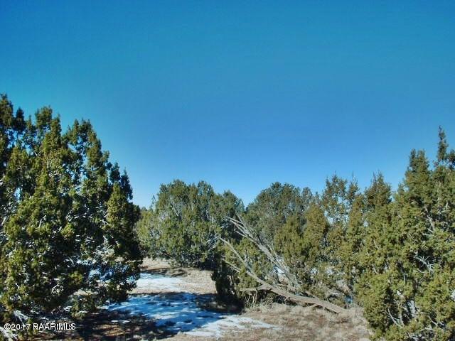 29605 Rock Ridge Road, Seligman, AZ 86337