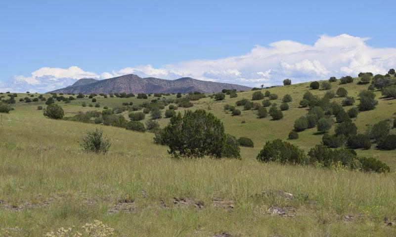 436 Sierra Verde Ranch, Seligman, AZ 86337