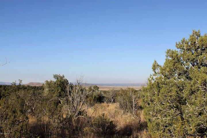None Seligman, Seligman, AZ 86337