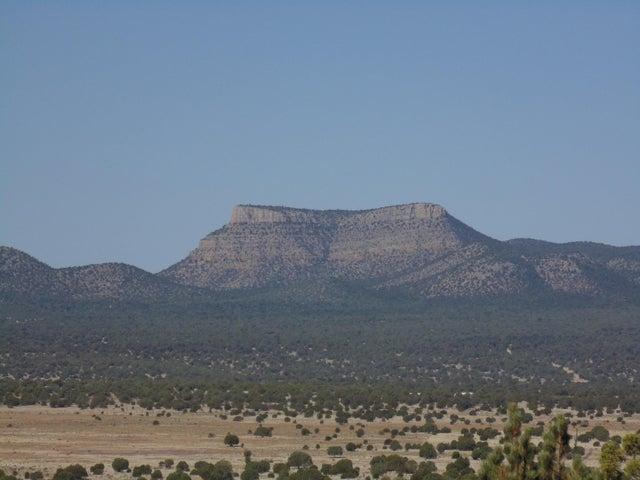 556 N Caliente Wind Way, Seligman, AZ 86337