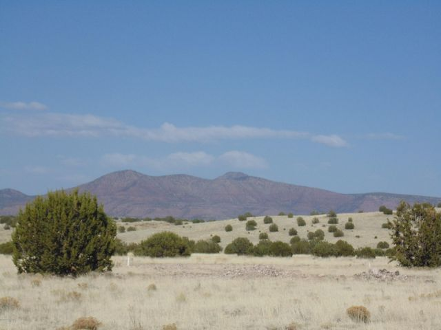 43134 N Deer Camp Trail, Seligman, AZ -86337