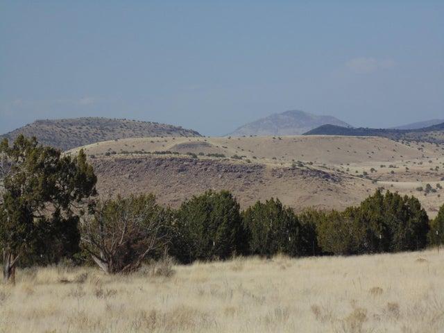 43134 N Deer Camp Trail, Seligman, AZ -86337