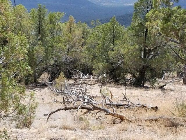 291 Sierra Verde Ranch, Seligman, AZ 86337