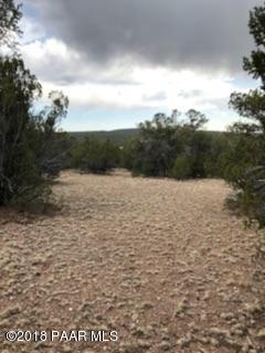 1457 N Hog Heaven Ln, Seligman, AZ 86337