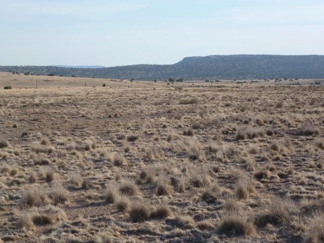 165 Sierra Verde Ranch, Seligman, AZ 86337