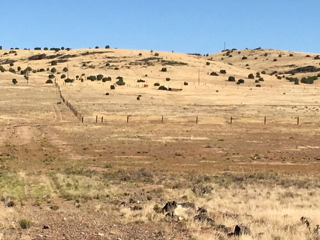 Lot 156 Antelope & Williamson Valley Road, Seligman, AZ 85360