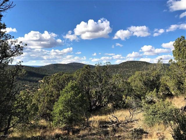 42955 Lakota Way, Seligman, AZ 86337