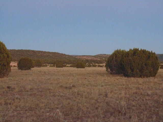 Lot 79 Sierra Verde Ranch, Seligman, AZ 86337