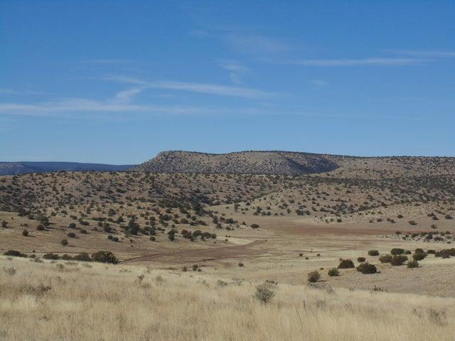 177 Sierra Verde Ranch Road, Seligman, AZ 86337