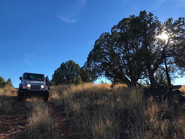 0 Un Named Road Seligman, Seligman, AZ 86337