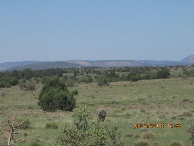 Lot 311 Hyde Park Road, Seligman, AZ 86434