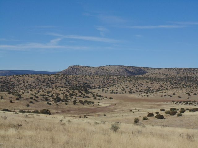 395 Sierra Verde Ranch, Seligman, AZ 86337