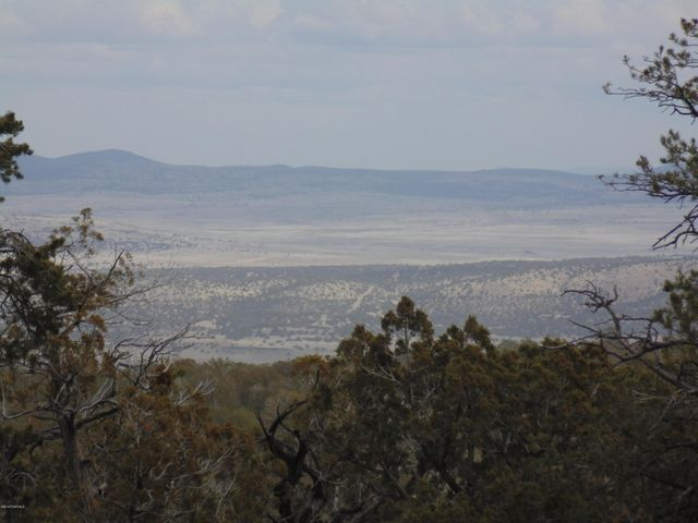 493 N High Sierra Road, Seligman, AZ 86337