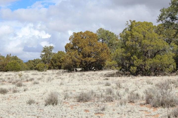 Tbd Humming Bird Lane, Seligman, AZ 86337