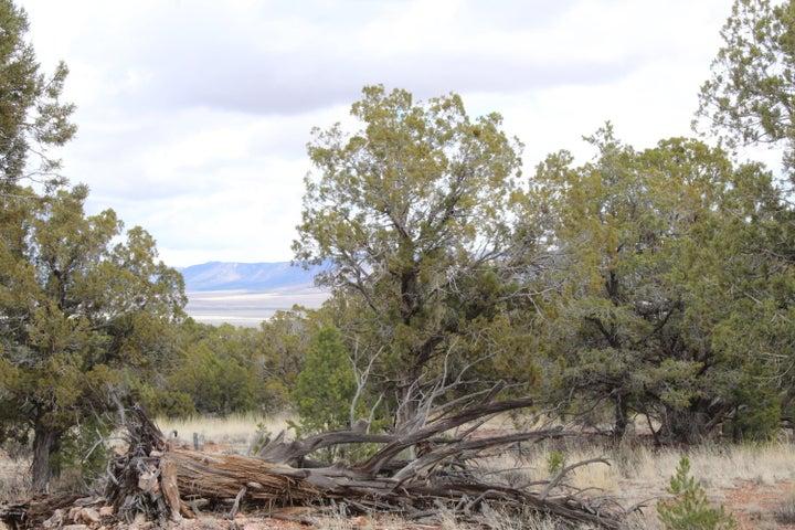 Tbd (2) Humming Bird Lane, Seligman, AZ 86337