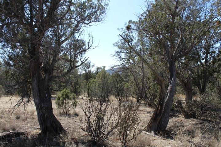 33500 Our Street, Seligman, AZ 86337