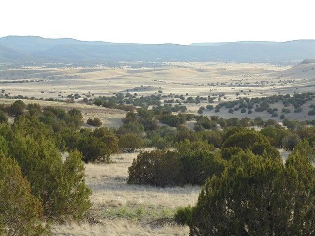 439 Sierra Verde Ranch, Seligman, AZ 86337
