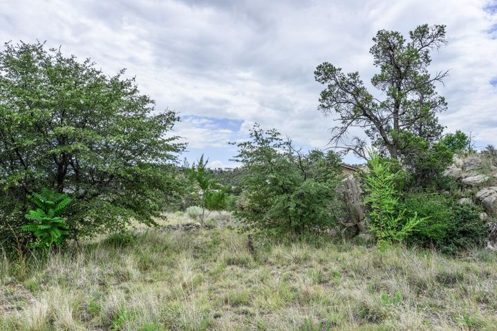 Beautiful acre lot in the heart of Prescott! Quiet, secluded, fabulous panoramic views, lush vegetation and exquisite boulders! Ideal location for building unique custom home, tucked in the trees and boulders of Geneva Woods. Located between Willow Creek and Williamson Valley Rd. for convenient access to all the amenities Prescott has to offer. Paved road and city utilities available nearby! Northeast Views of the Granite Dells! Check it out today before it's gone!!!