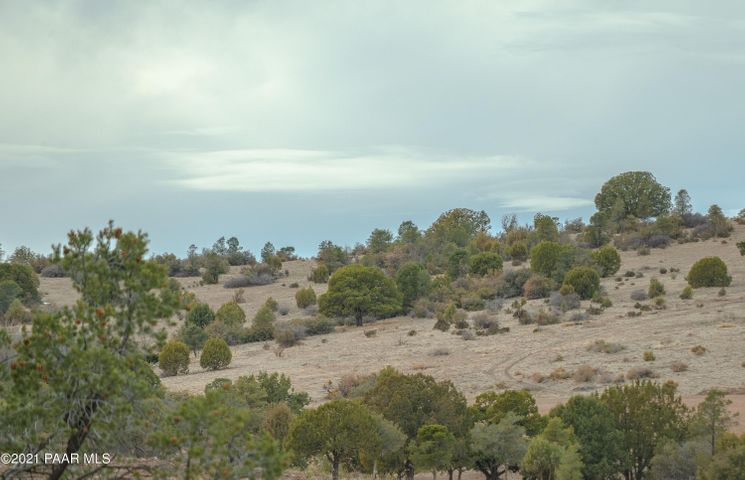 Beautiful lot in the Ranch at Prescott! Build your dream home on this nearly 1/2 acre lot. All utilities, including city water and city sewer nearby. Conveniently located near Prescott and Prescott Valley, Close to shopping, trails and Lynx Lake. This one is not to be missed. Check it out today!