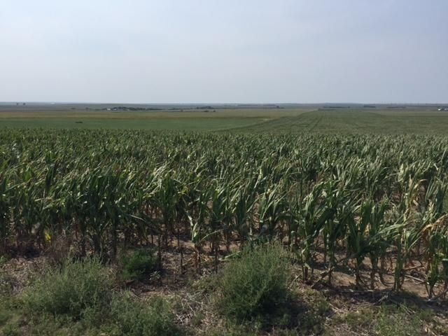 300th Ave. 34.88 acres, Pierre, SD 57501