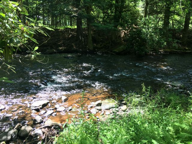 54 N Lehigh River Dr, Gouldsboro, PA 18424