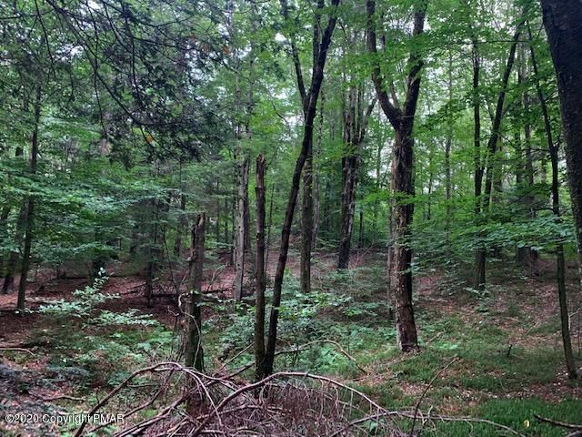Lot 1 & Lot off Stoney Hollow Rd, Long Pond, PA 18334