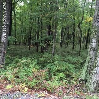Turkey Foot Trail, East Stroudsburg, PA 18302