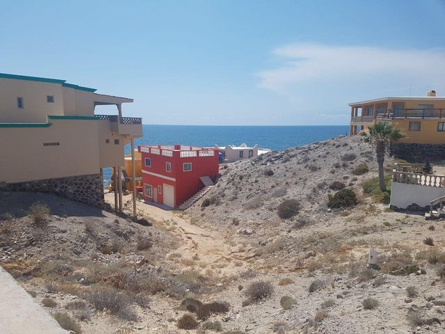 M3 L8 Pez Martillo, Cholla Bay, Puerto Penasco,