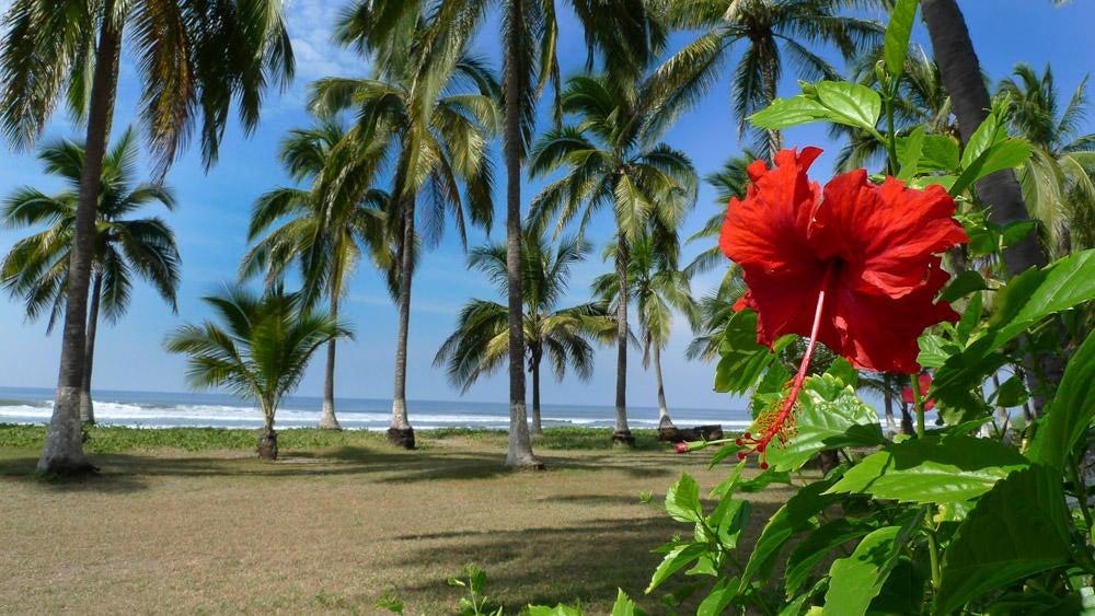 Isla de Tortugas
