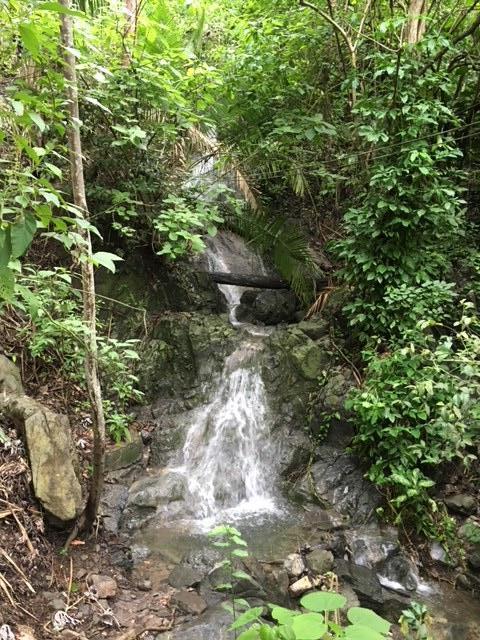 Cascading Waterfall down below