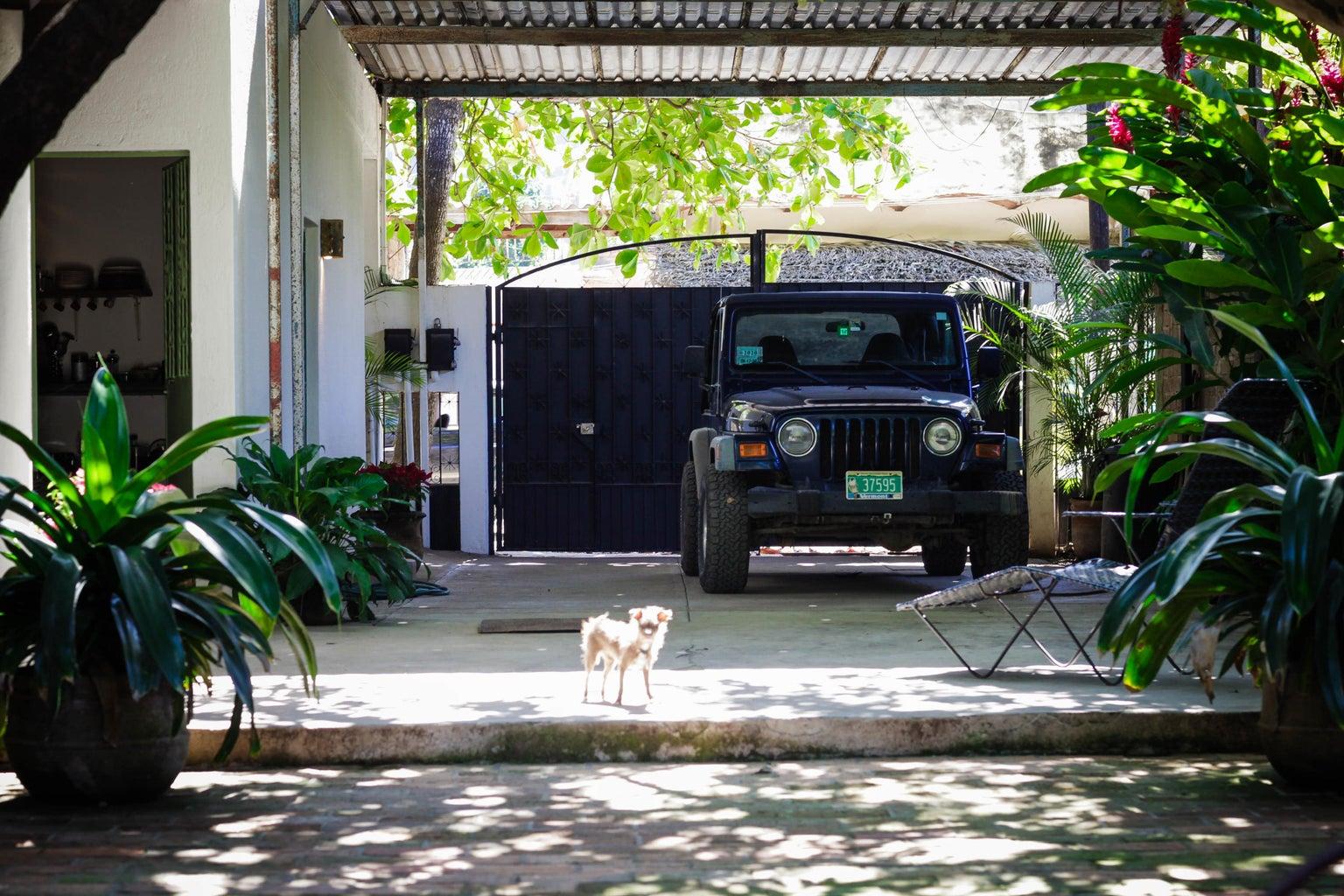 driveway / carport