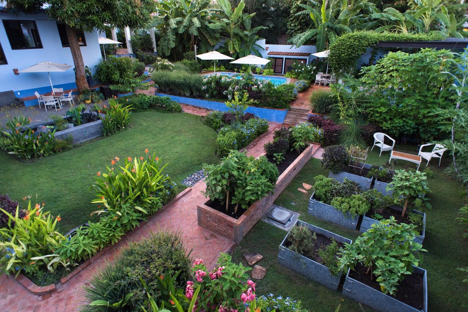organic edible garden