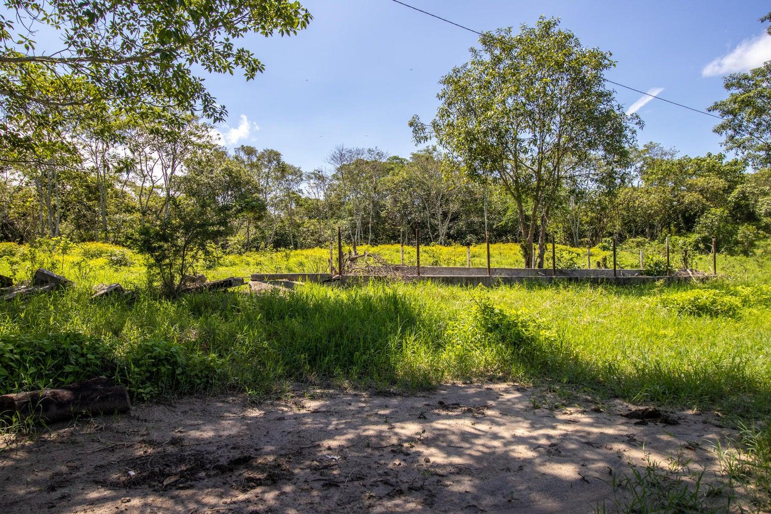 01 - Rancho Paraiso - 11