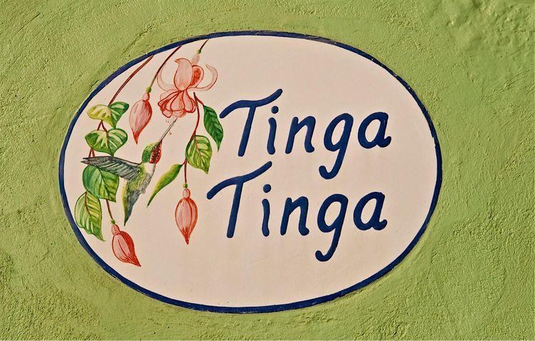 333 PALM SPRING E/ FRANCIA Y HAMBU, CASA TINGA TINGA, Puerto Vallarta, JA