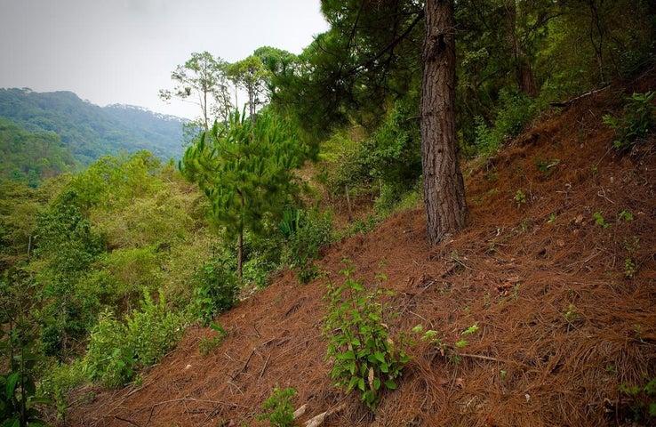 S/N CALLE PRIVADA DE LAS FLORES, LOTE LAS FLORES, Sierra Madre Jalisco, JA