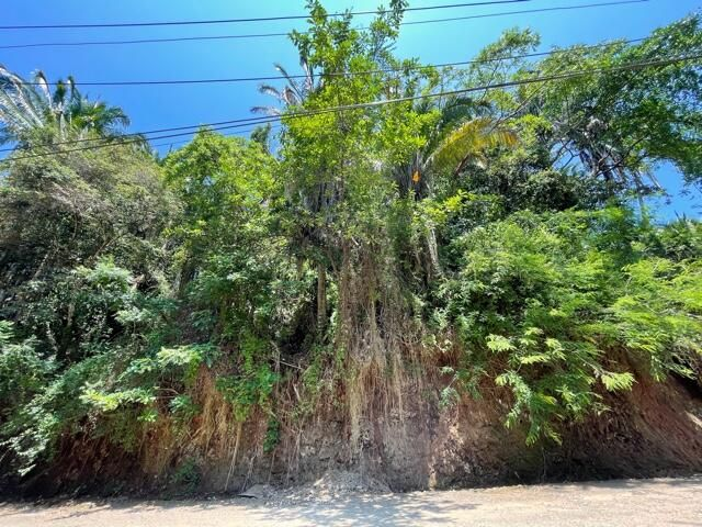 S/N Av. Las Palmas, Jungle Fraction G, Riviera Nayarit, NA