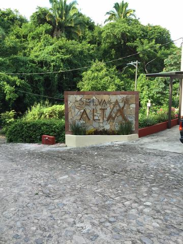 160 Venezuela (lirios) 10, Selva Alta