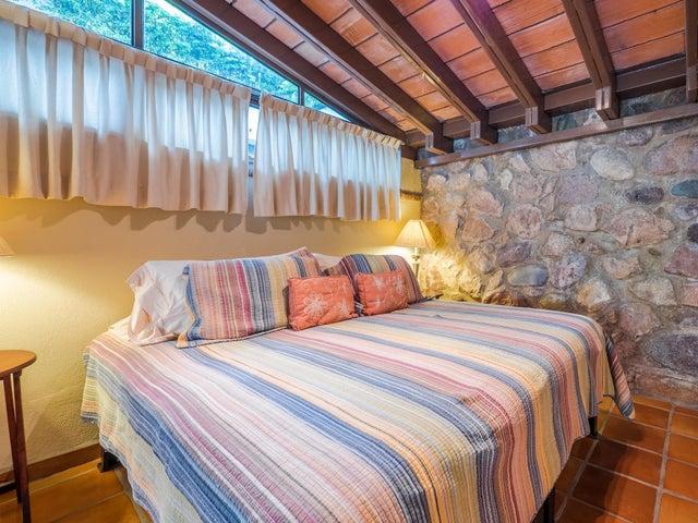 203 Francisca Rodriguez Safari 5, Selva Romantica